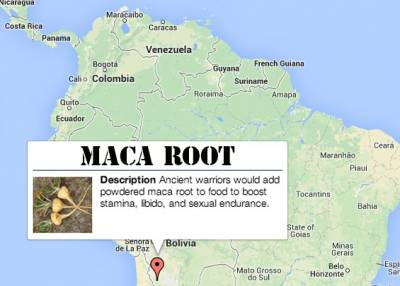 natural aphrodisiacs: maca root