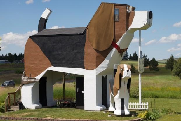 dog bark park hotel