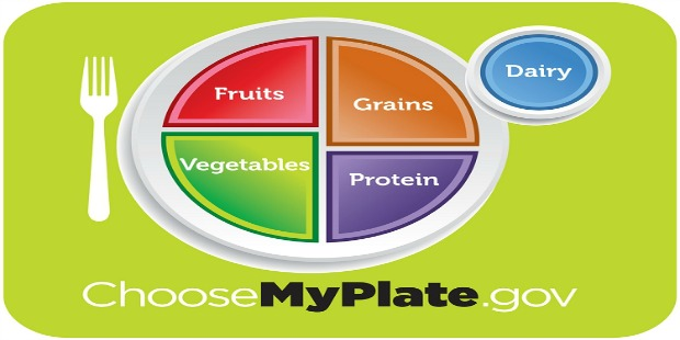 dietary guidelines: New meal guidelines chart from ChooseMyPlate.gov