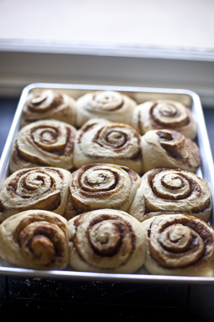 cinnamon rolls 07