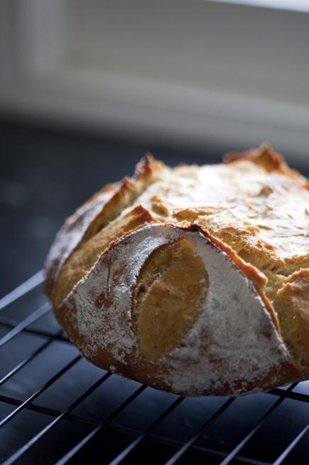 Old dough boule | Breadin5 05