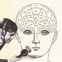 second language brain