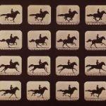 How Muybridge Captured Time