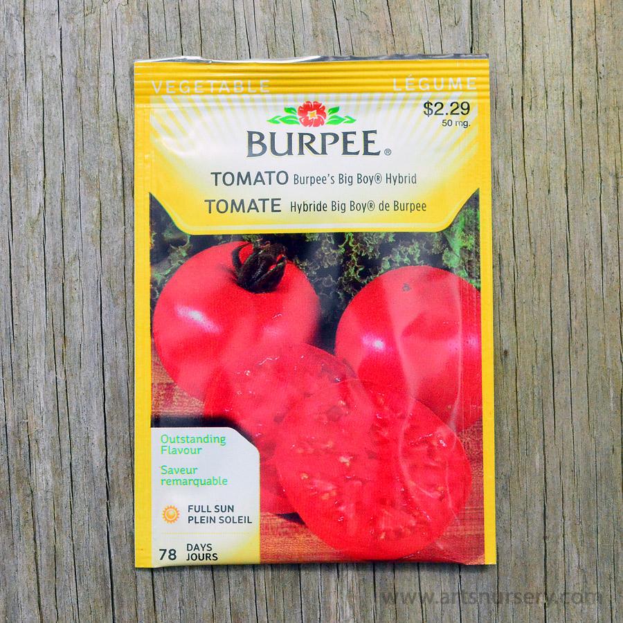 Picturesque Burpees Big Boy Hybrid Tomato Seeds Arts Nursery Ltd Big Boy Tomato Sauce Recipe Big Boy Tomato Indeterminate houzz 01 Big Boy Tomato