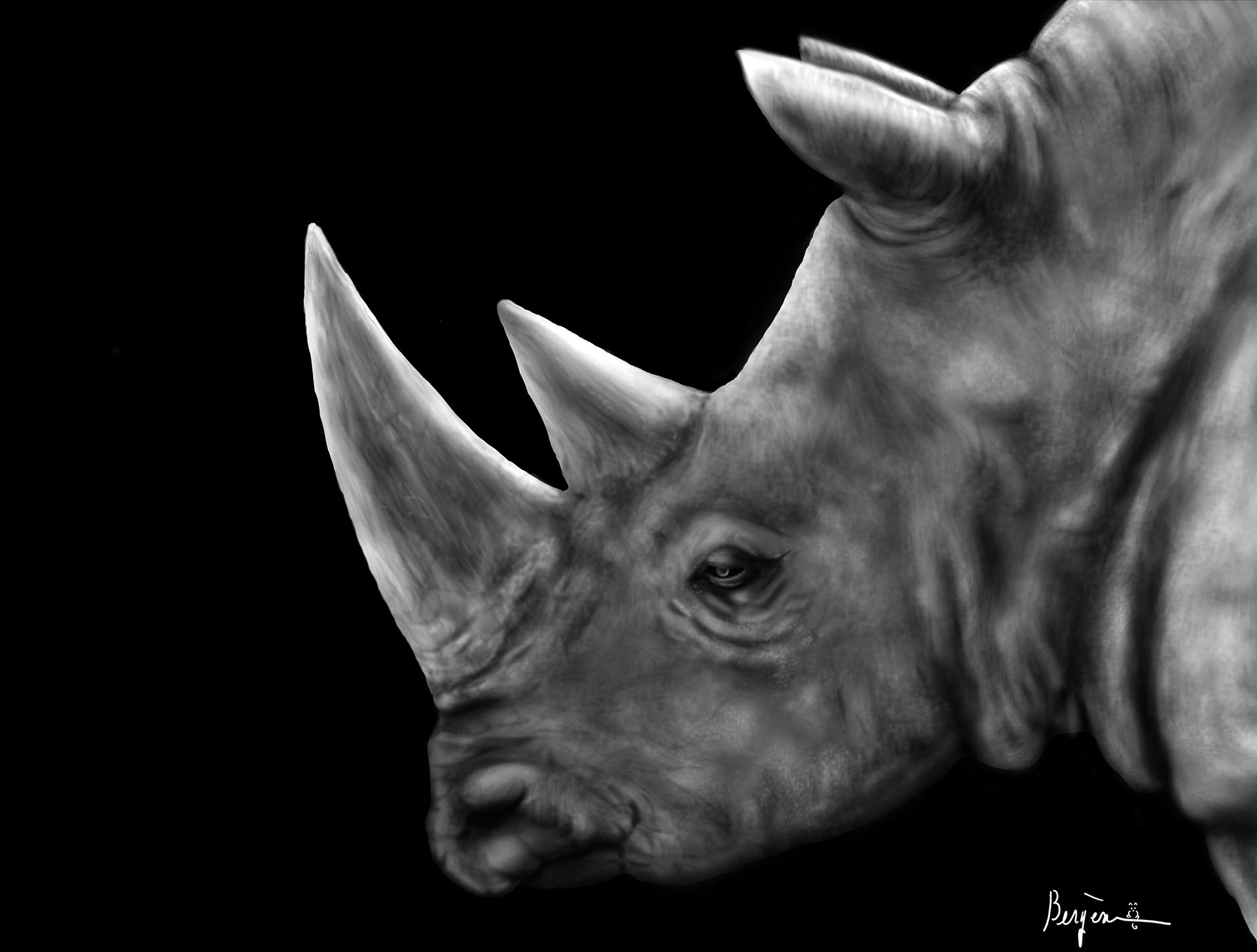 Rhinoceros in profile