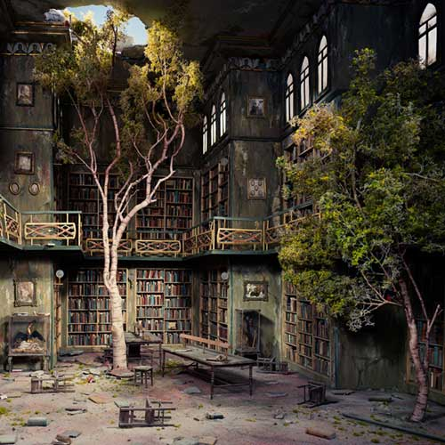 Tree growing in abandoned library