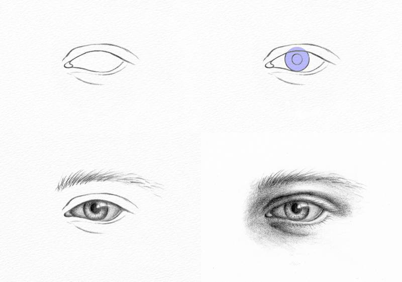 Pencil Portraits   How to Draw an Eye How to Draw an Eye
