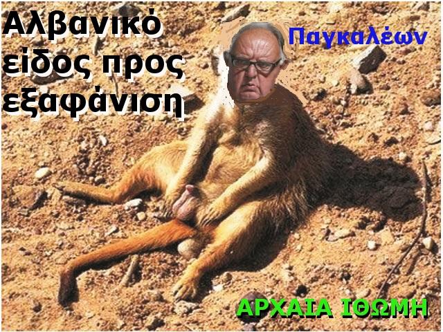 ΠΑΓΚΑΛΕ 1