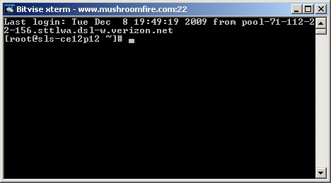 linux disk space ssh prompt