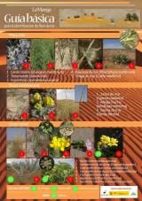 La Manga. Guía básica de identificación de flora dunar