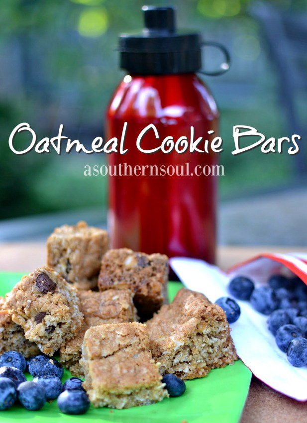 best oatmeal cookie bars