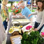 Farmers Market Recipes & Tips
