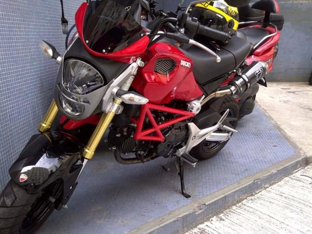 Honda Grom + Ducati Monster = Gromcati Gromcati Ducati Monster Honda Grom X Speed Motorland 02 635x476
