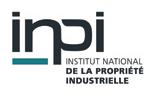 Logo_inpi-150x100