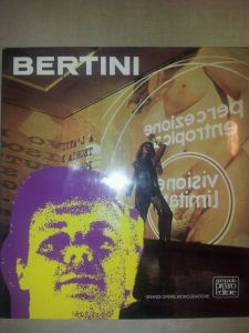 Bertini Monography