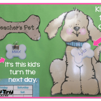 Teacher's Pet - Classroom Management Idea