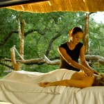 Wellness Safari - Ulusaba -
