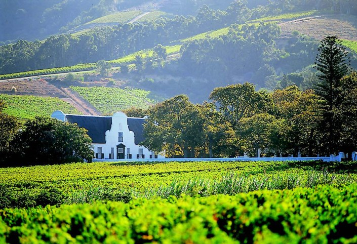 Wine-lands of South Africa