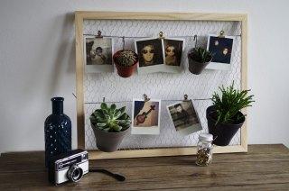 DIY-Mon-pêle-mêle-plantes-et-polaroïds-cage-à-poule