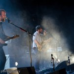 Frightened Rabbit (12)