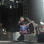 Joy Formidable (10)