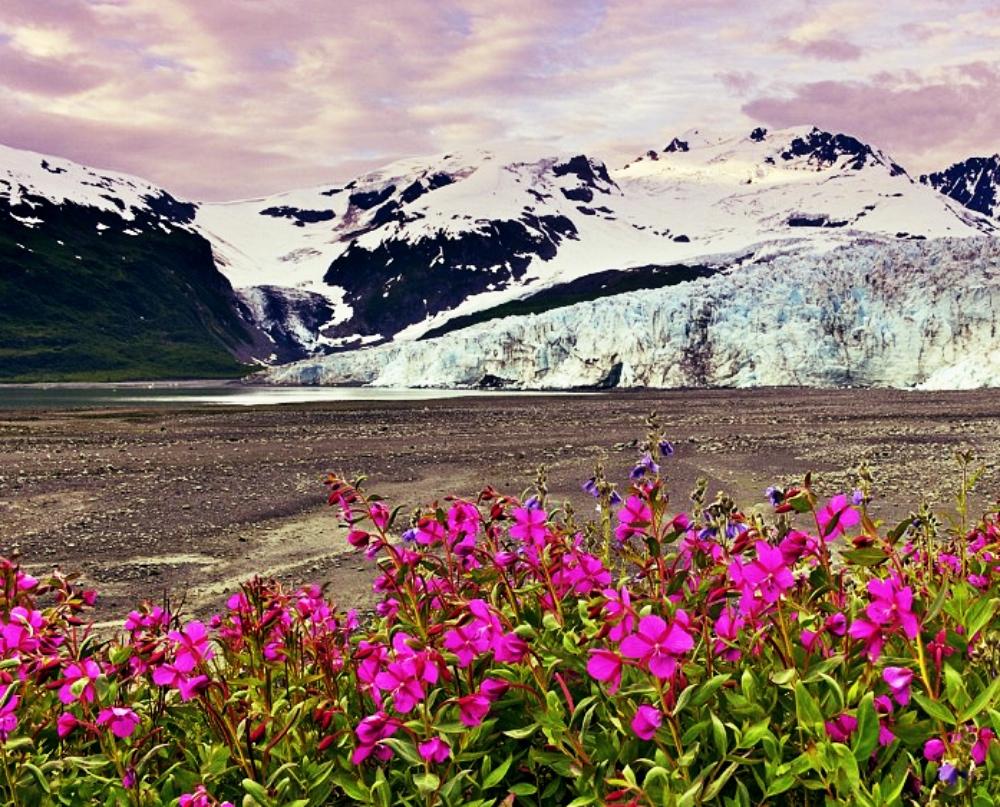 firewood Alaska_Fotor