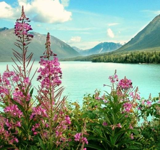 Talkeetna tourism destinations