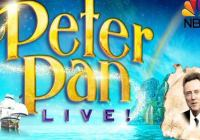 Peter Pan Live auditions