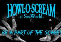 Seaworld San Antonio Howl-O-Scream