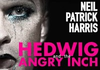 Hedwig performer wanted