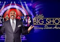 casting call for Little Big Shots