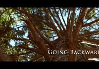 Going Backwards movie