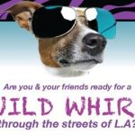 Major Cable Network TV Pilot Casting Groups of Animal Lovers in Los Angeles