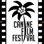 Canine Film Festival in Miami Holding Auditions for Dogs