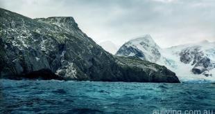 南極洲大象島岸邊生長5500年的苔蘚