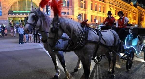 墨尔本City标志性的观光马车,从6月底起或将成为历史!