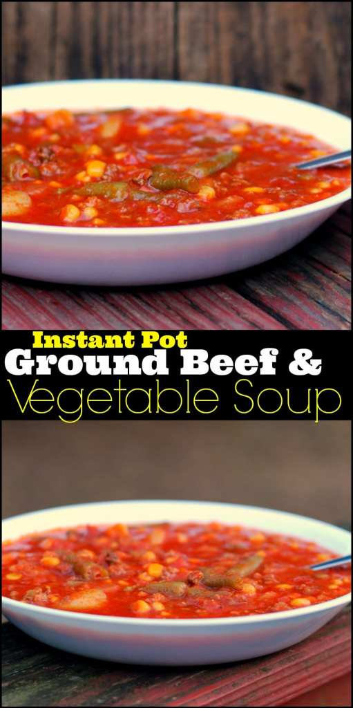 Instant Pot Ground Beef & Vegetable Soup | Aunt Bee's Recipes