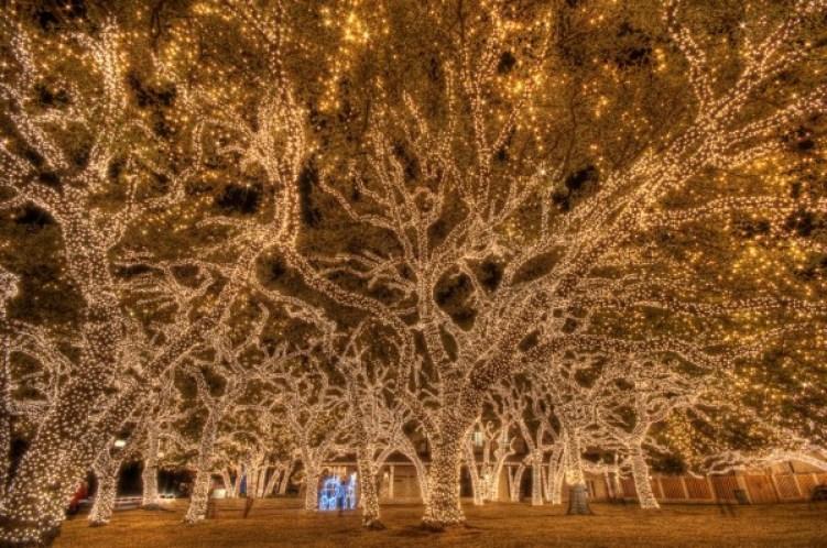 Pedernales Electric Co-op Lights. Photo: Flickr user Dave Wilson