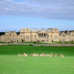 Holkham Hall, Norfolk, UK a fantastic day out for kids with autism – Review