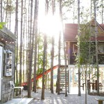 GET A ROOM: Lynne Knowlton's Treehouse Retreat