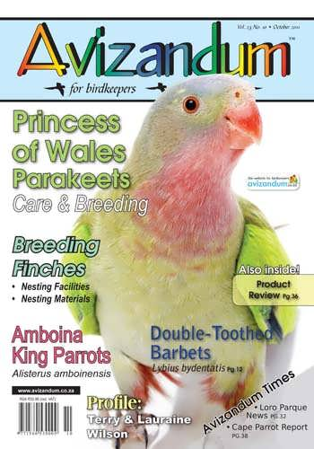 October2011Cover