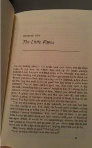 Little Rapes