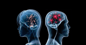male-female-brain-differences-featured-image