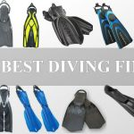Top 10 Diving Fins that Will Suit Your Needs and Diving Style