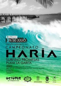 Cartel Cameponato de Surf 29-30 de julio