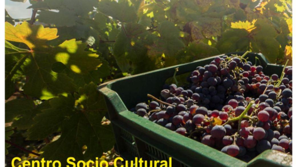 Cartel Retos-de-la-viticultura
