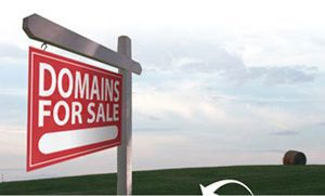 Premium domain names and established websites for sale