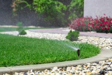 Jak intenzivně zalévat trávník?