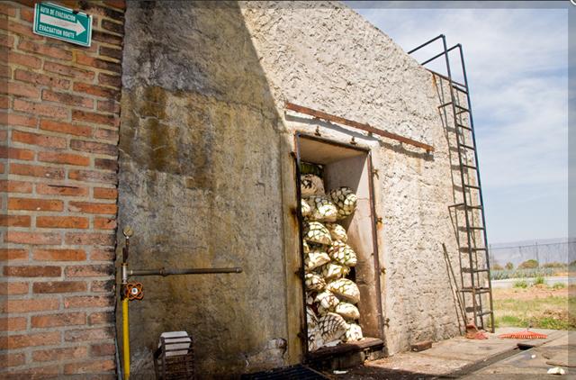 Cooking the Piñas Platinum, Reposado and Añejo,: Clay Hornos Ovens: 36 Hours