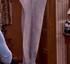 Vagina sculptore